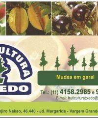 Fruticultura Toledo em Vargem Grande Paulista