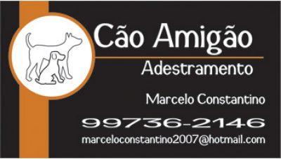 Adestrador de Cães Marcelo Constantino em Mairiporã