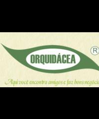 Orquidácea
