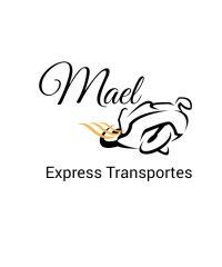 Mael Express Transportes – Entregas Rápidas E Moto Boy – Em Diadema SP